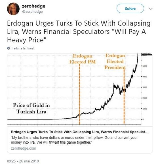 graphique - Erdogan - lire - devise étrangère