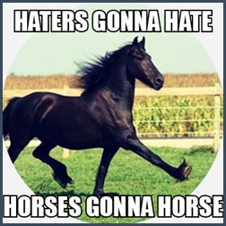 Haters gonna hate. Horses gonna horse