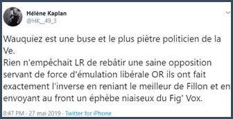 Tweet Hélène Kaplan Wauquiez est une buse